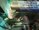 Hải Phòng: Đôi vợ chồng bị tạt cả ca axit đậm đặc trên phố