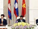 Việt Nam tích cực tham gia cơ chế hợp tác của khu vực