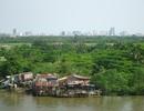 Cảnh hoang vắng ở khu đô thị tỷ đô
