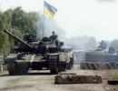 Quân chính phủ Ukraine phản công tại thành phố cảng Mariupol
