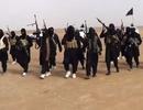 Mỹ bắt giữ 6 thanh niên âm mưu gia nhập IS