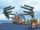 Mỹ lên kế hoạch bán 17 máy bay V-22 Osprey cho Nhật Bản