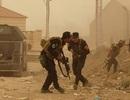 Phiến quân IS đã chiếm tỉnh lớn nhất Iraq