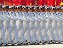 Mỹ lo ngại Trung Quốc gia tăng sức mạnh hải quân