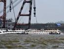 Cứu hộ Trung Quốc lật tàu thành công, số người thiệt mạng tăng lên 97