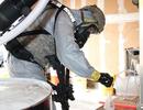 Mỹ ngưng chương trình gửi vi khuẩn gây bệnh than