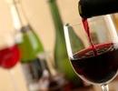 Rượu ngon là nhờ vi khuẩn