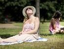 Phơi nắng giúp hạ huyết áp