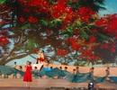 Mãn nhãn với màn trình diễn pháo hoa của thành phố hoa phượng đỏ