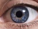 Phát hiện lớp thứ 6 trong mắt người