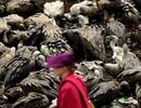 """Bí ẩn tục """"kền kền ăn xác chết"""" của người Tây Tạng"""