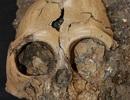 Khai quật xương sọ 6 triệu năm tuổi