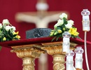 Vatican công bố mảnh xương được cho là của Đức Giáo Hoàng đầu tiên