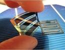 Các tế bào pin năng lượng mặt trời hữu cơ mới