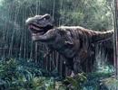 Kinh ngạc vạt núi đá lưu giữ hơn 5.000 dấu chân khủng long