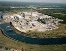 Hoa Kỳ có nguy cơ mất nguồn điện sạch nếu loại bỏ điện hạt nhân