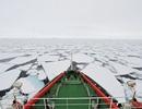 Trung Quốc quan tâm đặc biệt tới mỏ kim cương Nam Cực?