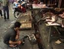 """Chợ ẩm thực """"kinh hoàng"""" nhất thế giới"""