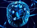 Thử nghiệm dùng dòng điện kích thích não giúp tỉnh táo