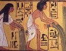 Người Ai Cập cổ ăn gì?