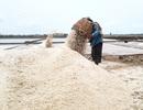 Mặn đắng bán 10kg muối chưa mua nổi tô phở