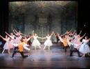 Công diễn vở ballet nổi tiếng thế giới tại Hà Nội