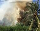 Đồng cỏ giữa khu dân cư cháy dữ dội, hàng trăm người hoảng loạn