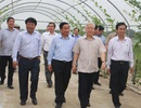 Tổng Bí thư Nguyễn Phú Trọng thăm và làm việc tại Hà Tĩnh