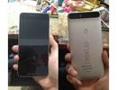 Ảnh thực tế Nexus mới với cảm biến vân tay, cổng USB Type-C