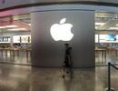 Apple âm thầm thành lập công ty đại diện tại Việt Nam