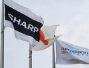 Foxconn bất ngờ tạm ngừng thương vụ mua Sharp vào phút cuối