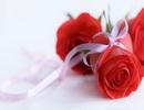 """Vợ kéo rách """"của quý"""" của chồng vì không được tặng hoa ngày 8/3"""