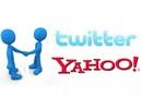 Twitter cân nhắc mua lại Yahoo