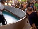 Khoảnh khắc rắn độc suýt cắn trúng khán giả trong chương trình biểu diễn
