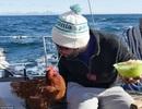 Chàng trai đi thuyền vòng quanh thế giới với một con gà