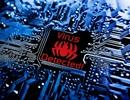 """Vì sao phần mềm bảo mật chỉ """"cách ly"""" chứ không xóa file bị nhiễm virus?"""