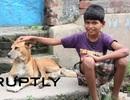 Cậu bé 10 tuổi nghiện... bú sữa từ chó