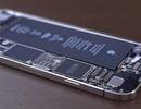 Bộ đôi iPhone 7 sở hữu 3GB RAM, cho hiệu suất vượt qua iPad Pro 12.9 inch