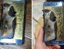 Hé lộ nguyên nhân khiến pin trên Galaxy Note7 gặp sự cố cháy nổ