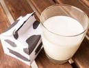 Cách dùng và bảo quản sữa trong hộp giấy