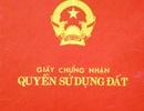 Vụ 1 thửa đất cấp 4 sổ đỏ: UBND tỉnh Thanh Hóa chỉ đạo Thanh tra vào cuộc