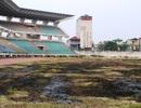 """Cảnh """"hoang tàn"""" trong sân bóng đá trăm tỷ ở Ninh Bình"""