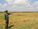 """Dự án """"cứu"""" 2.400 hộ dân ì ạch: Tỉnh nguy cơ mất vốn, nông dân bỏ ruộng?"""