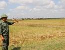 """Dự án """"cứu"""" 6.000 dân bỏ dở: Nông dân kêu cứu, 8 tỷ đồng bay theo gió?"""
