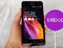 Asus chính thức tung bản cập nhật Android 5.0 cho tất cả Zenfone