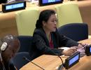 Việt Nam khẳng định chủ quyền với Hoàng Sa, Trường Sa tại Liên hợp Quốc