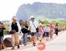 """56 du khách Việt """"mất tích"""" tại Hàn Quốc: Đề nghị Bộ Công an vào cuộc"""