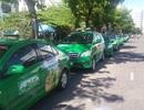 Đà Nẵng: Nhiều hãng taxi giảm giá cước