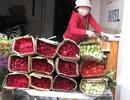 Đà Nẵng: Hoa tươi đắt khách dịp lễ 20/11