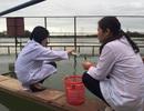 Nước sông nhiễm mặn nặng, Đà Nẵng nguy cơ thiếu nước sạch